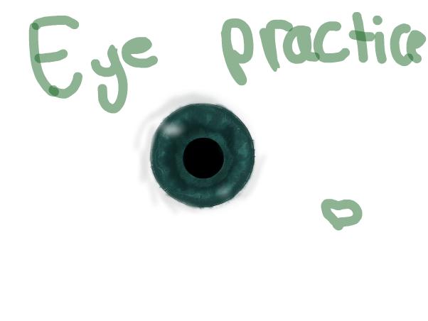 Eye practice.