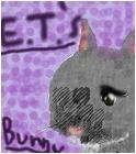 E.T.'s Bunny