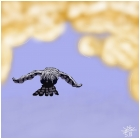 Owl FLying into Clouds