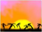 tree's in the sun set