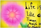 life is like a flower..