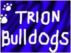 Trion Bulldogs
