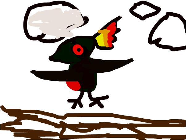 the Dark Bird