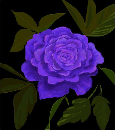 I Once had a Lavender Rose