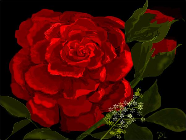 "Big ""Red"" Rose"