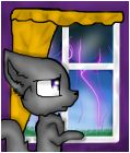 cat and lightning