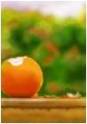 Orange from Heaven