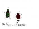lesser of 2 weevils
