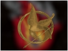 Mocking Jay: Fire is catching