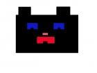 Mind craft black cat